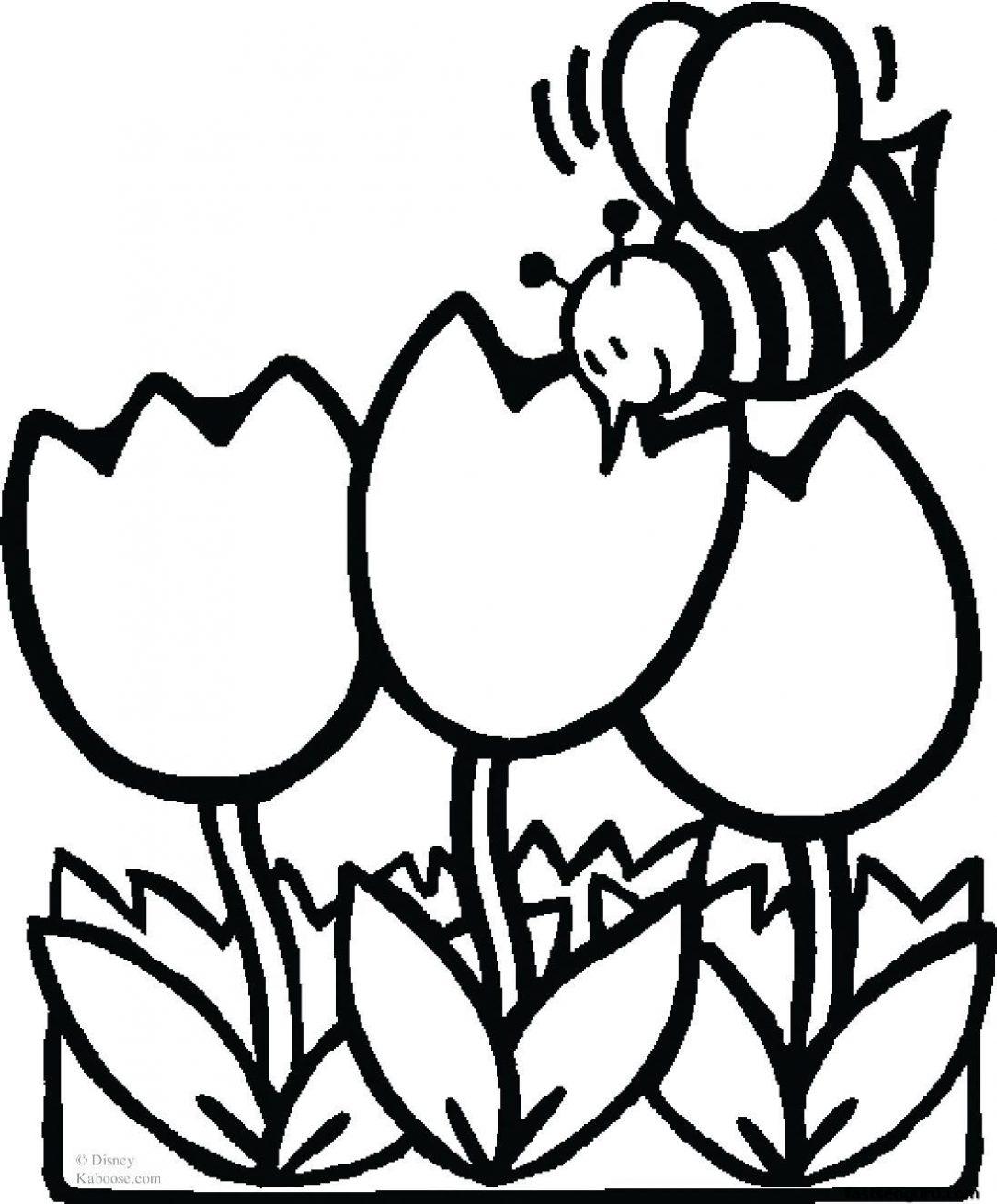 1084x1310 Cute Drawings Of Food Flower Tumblr Anatomy Step Pastel Art Roses