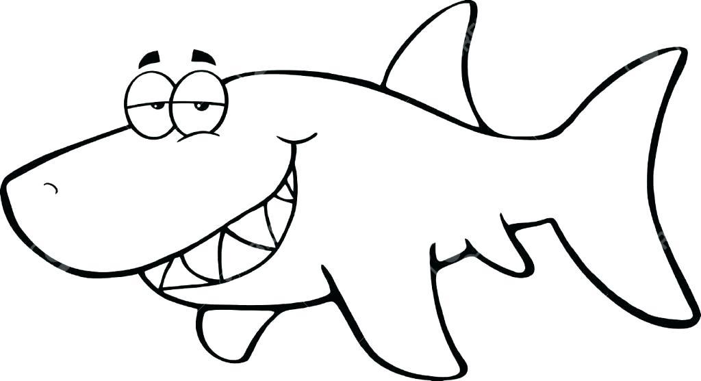 1024x557 cool shark drawings drawn shark pencil x shark cartoon easy
