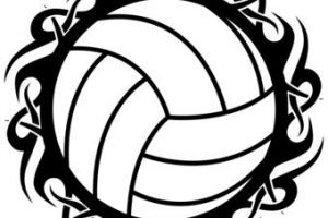 300x200 Cool Volleyball Ball Clipart Clipart Portal
