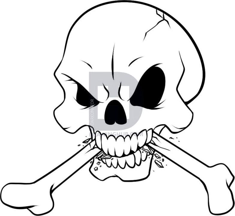 783x720 How To Draw Bones, Step