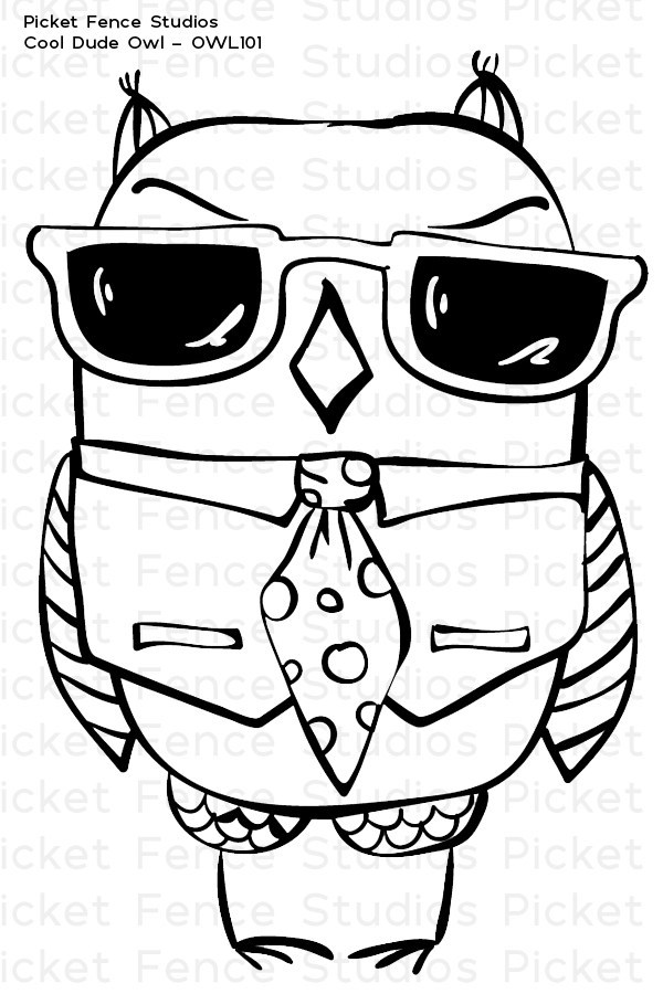 600x900 Picket Fence Studios Clear Stamp Cool Dude Owl