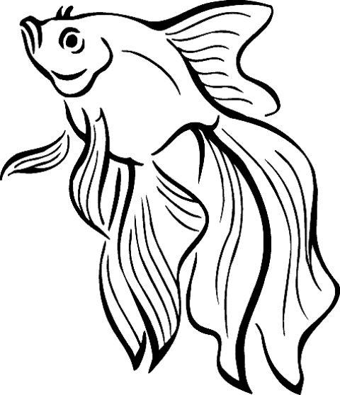 480x558 Drawing Wildlife And Pets Fish Coloring Page, Fish Drawings