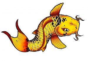 300x210 Fish Drawings To Color Cool Fish Drawing At Getdrawings Free