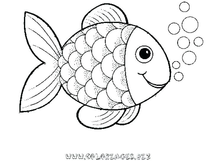 730x547 Fish Easy To Draw Fish Drawing Outline At Free For Fish Easy