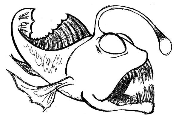 600x407 Angler Fish Drawing Casa Sanmarino