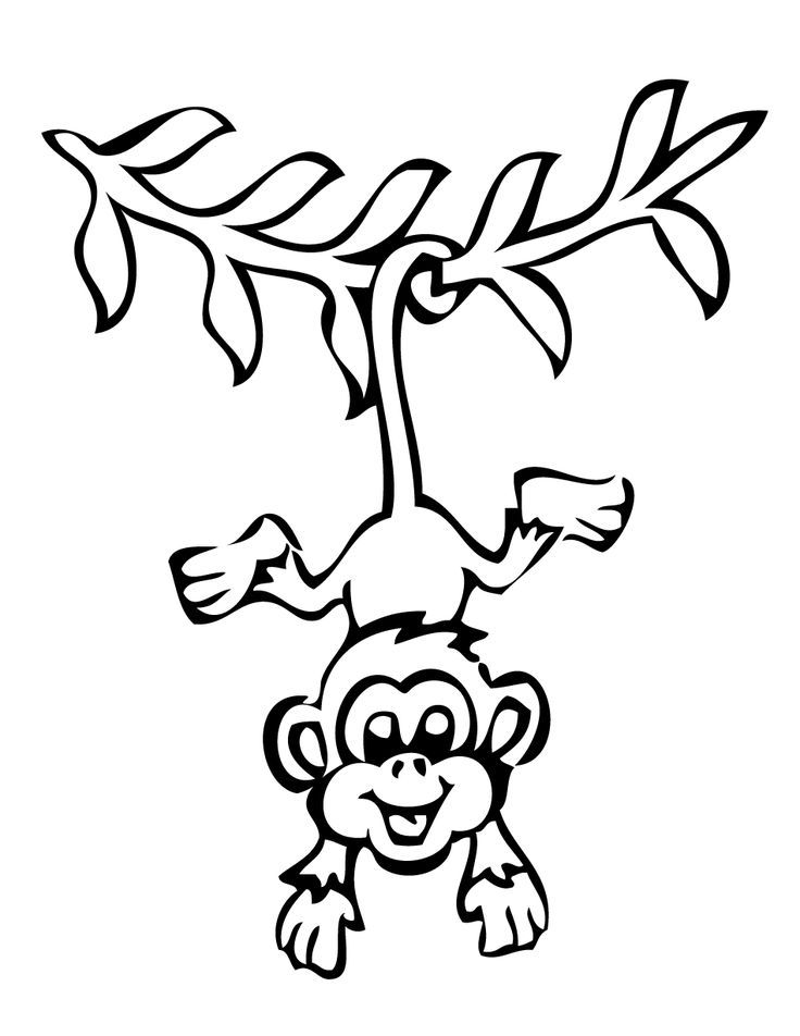 736x952 Monkeys Clipart Outline