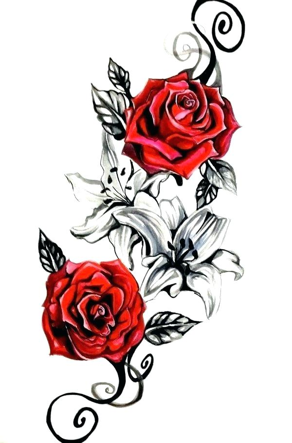 600x911 How To Draw Really Cool Flowers How To Draw A Lily Step Design