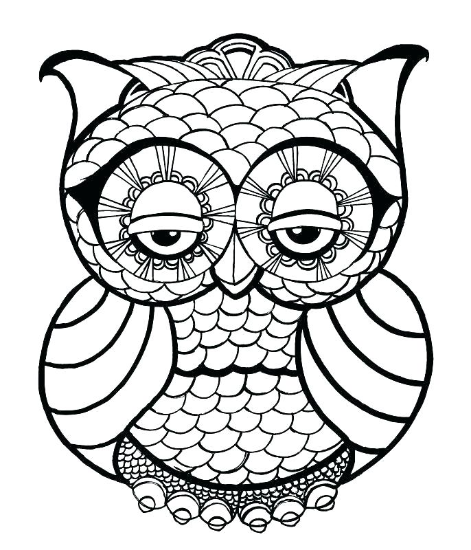 686x800 owl outline drawing owl head silhouette owl outline drawing
