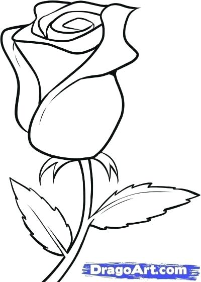 400x561 Drawings Of Roses Easy Easy Draw Roses How To Draw Flowers Learn