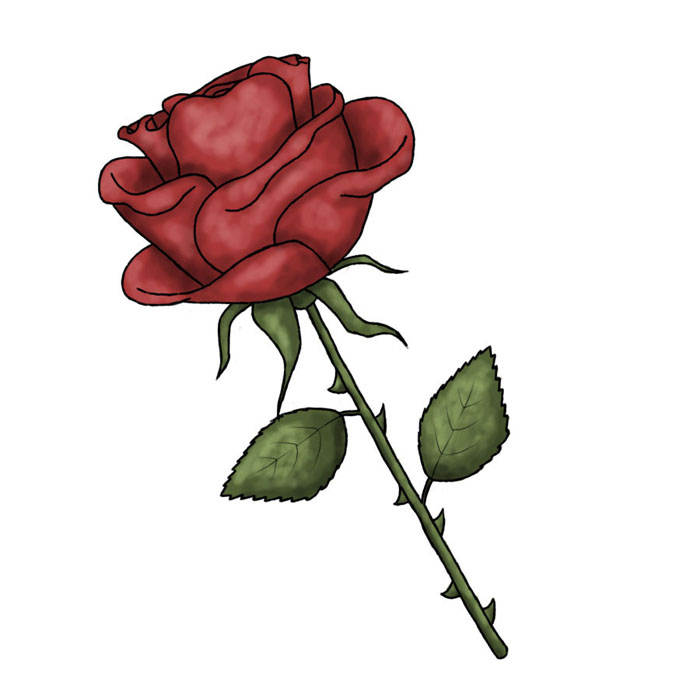 700x700 Red Rose Clipart Cool