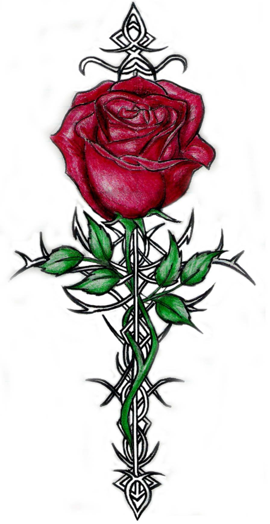 896x1742 Tattoos Of Roses With Thorns Rose And Thorn Cool On Free Rose