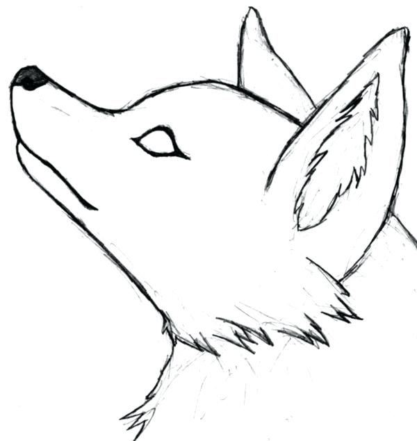600x635 easy wolf drawing winged wolf drawing template cool easy wolf