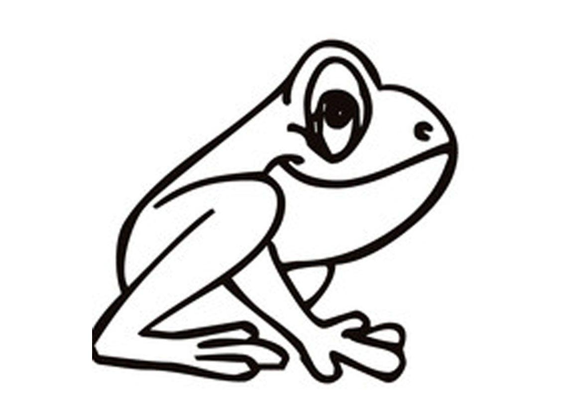 1169x826 coqui frog coqui frog art coqui frog cartoon coqui frog tattoo