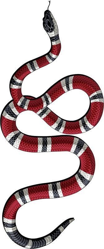 335x800 gucci snake stickers snake wallpaper, snake painting y snake