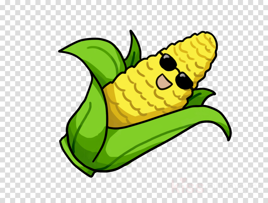 900x680 Download Corn Drawing Transparent Clipart Corn On The Cob Drawing
