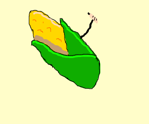 300x250 Corn Drawing