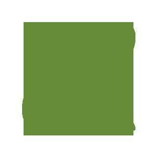 320x320 Cornfield Drawing Corn Farm Transparent Png Clipart Free