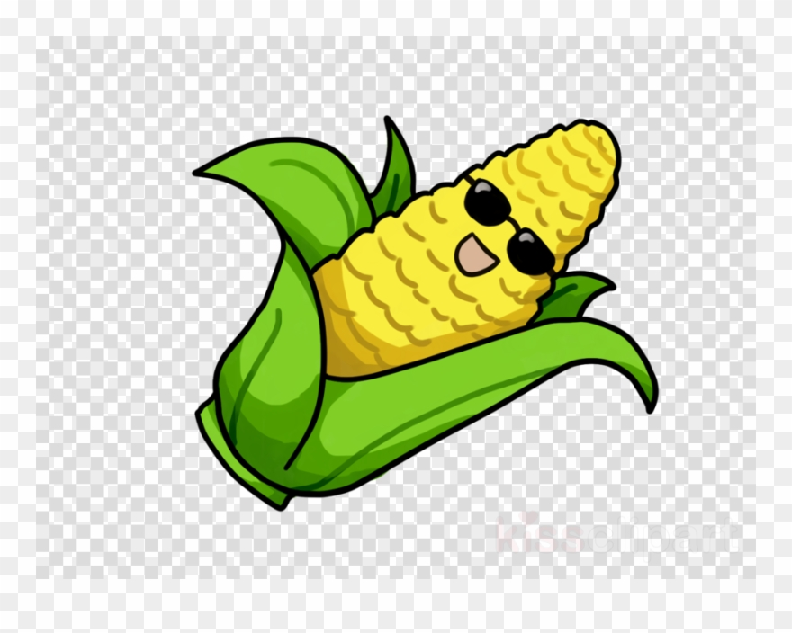 880x704 Download Corn Drawing Transparent Clipart Corn