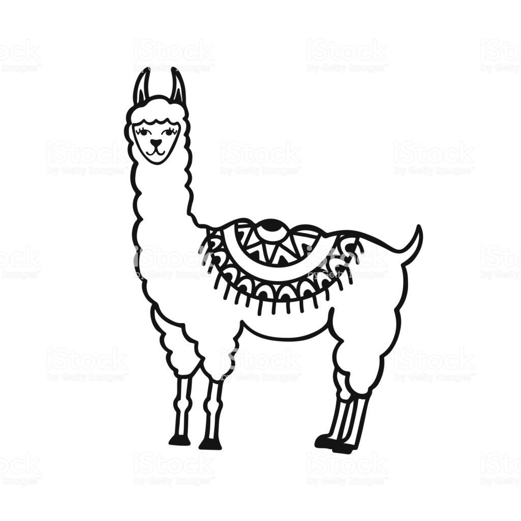 1024x1024 Alpaca Drawing Tutorial Tool Corn Anime Software Iydunetwork