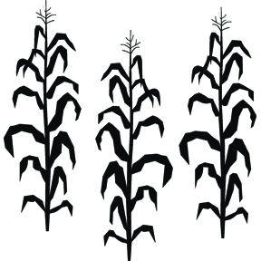 288x288 Halloween Corn Field Clipart