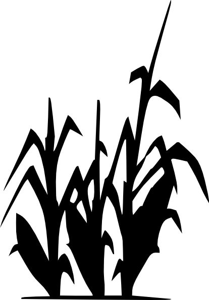 414x595 Corn Stalk Stencil Drawing