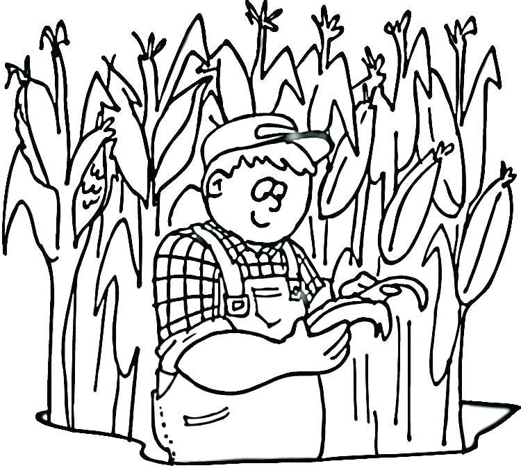 750x673 Free Coloring Pages Of Corn