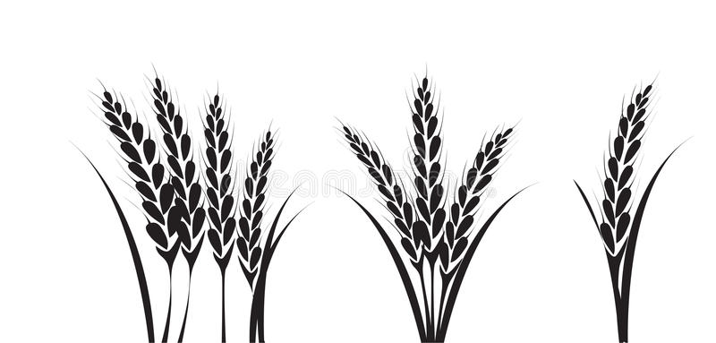 800x383 Collection Of Free Wheat Drawing Silhouette Download On Ui Ex
