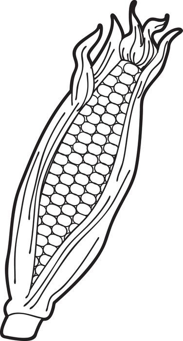 376x700 Corn Field Coloring Page