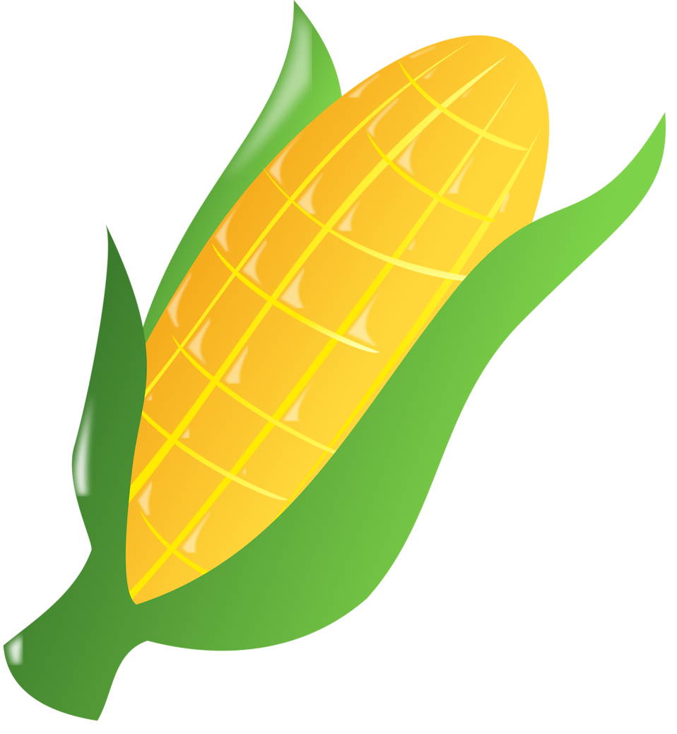 Corn Stalk Drawing
