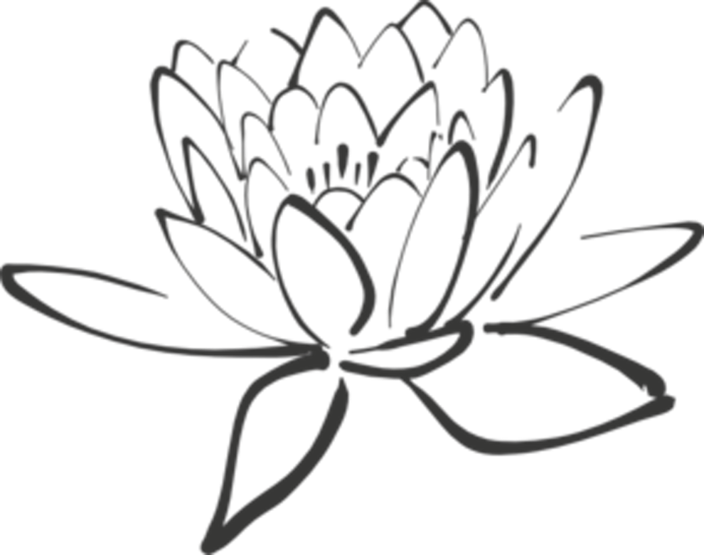 990x780 Cliparts For Free Download Lotus Clipart Corner And Use