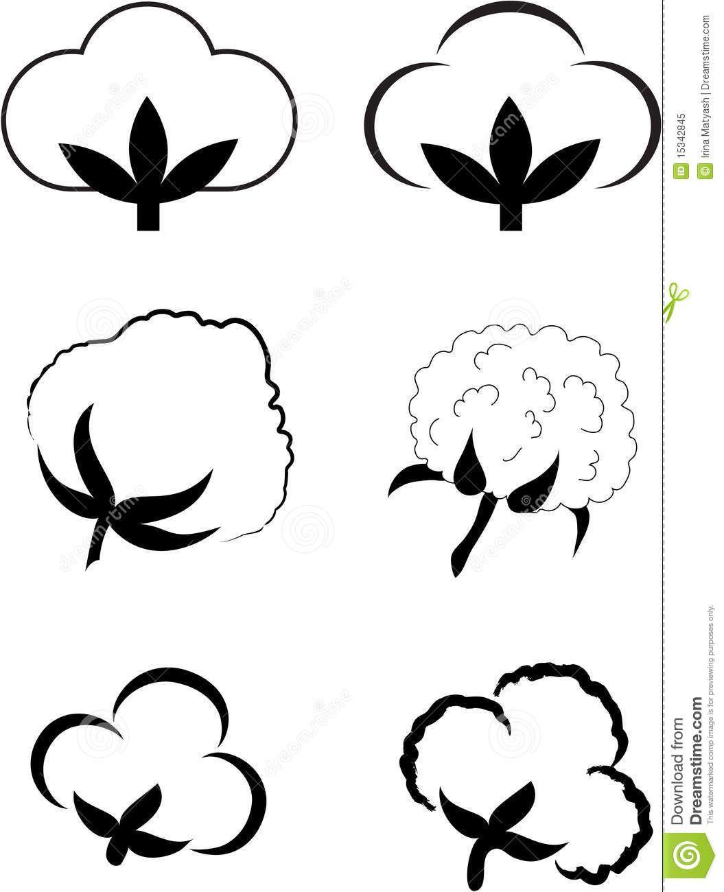 1055x1300 cotton plant images cotton