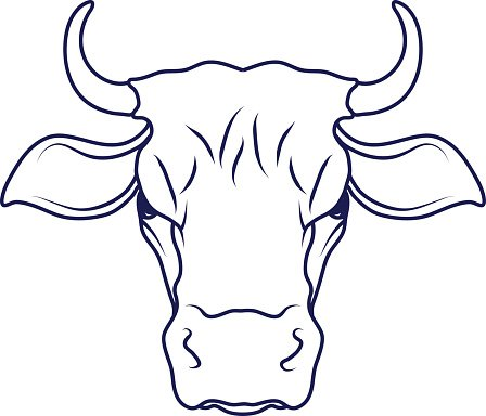 448x384 cow,cartoon cow,cow drawing,cow head vector illustration premium