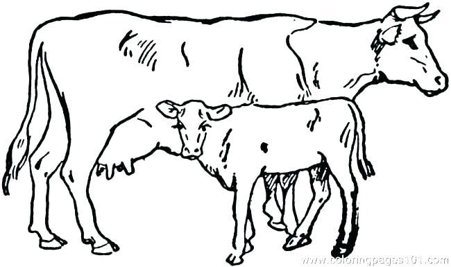 650x385 cute cartoon cows cute cartoon cows in a field cute pics