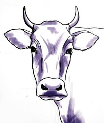 350x415 bull head drawing drawing in cow drawing, cow, cow face
