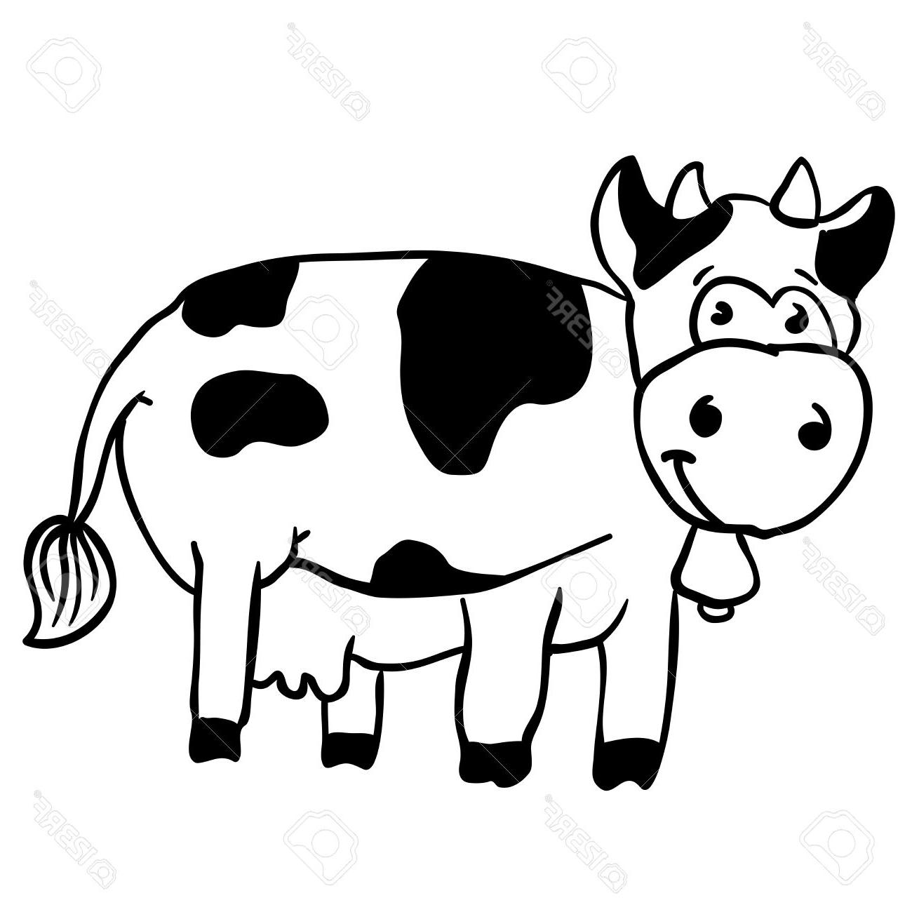 Cow Drawing Pictures Free Download Best Cow Drawing Pictures On