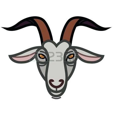 450x450 goat face drawing cute sketch draw goat face stock photo baby goat