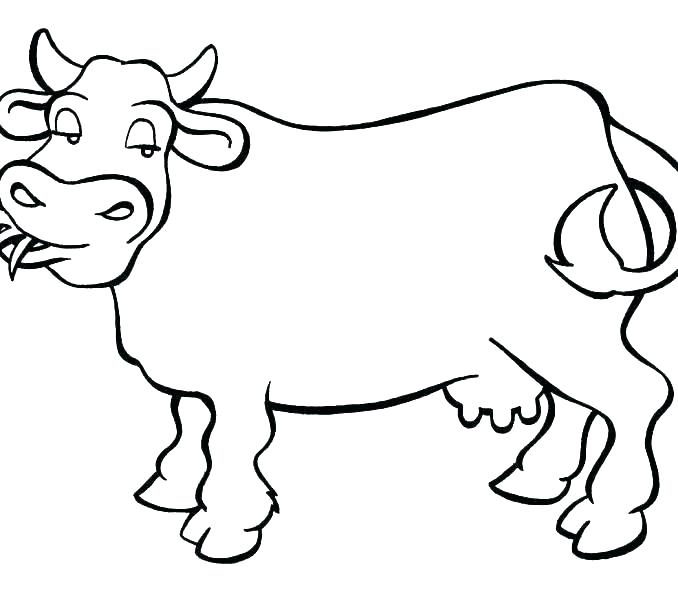 678x600 Pictures Of Cows To Color Coloring Pictures Of Cows Cow Face