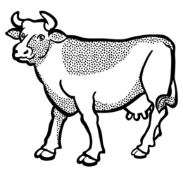 260x260 download cow line drawing clipart english longhorn texas longhorn