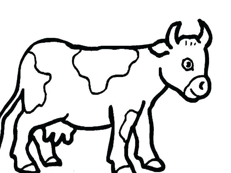 736x552 cute cow drawings cute cow cartoon cute drawings for him