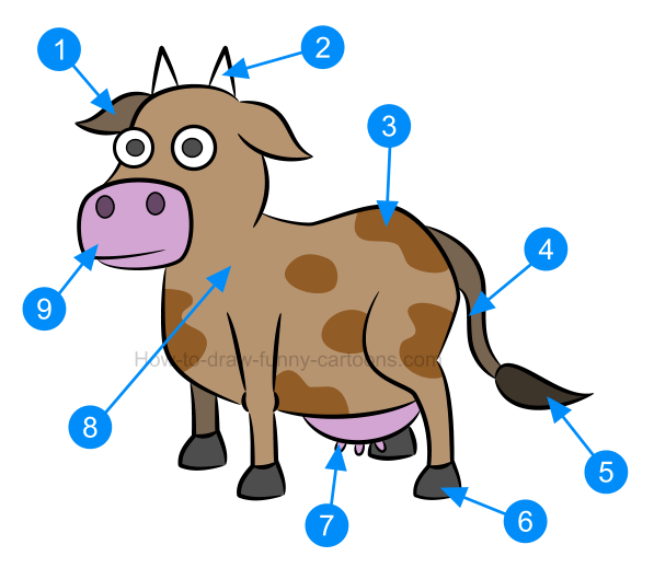 597x519 How To Draw An Illustration Of A Cow