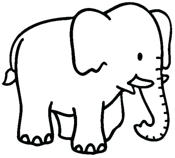 615x554 Elephant Coloring Picture Mindmasseuse