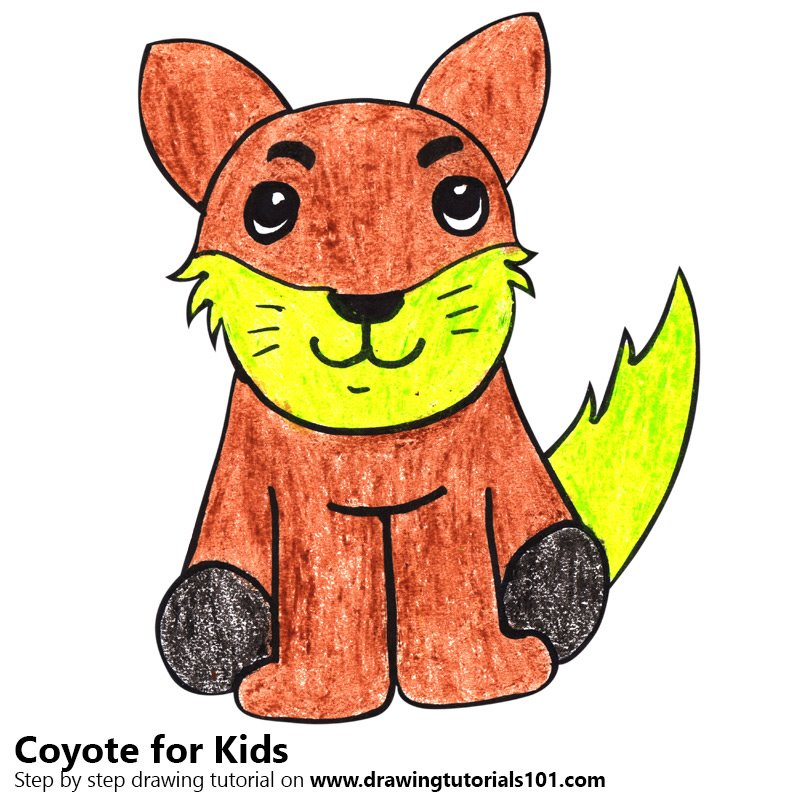 800x800 Learn How To Draw A Coyote For Kids
