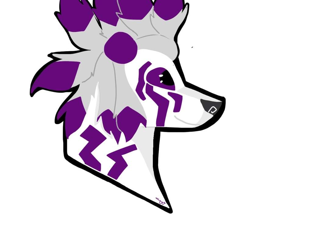 1024x791 coyote drawing aj amino amino