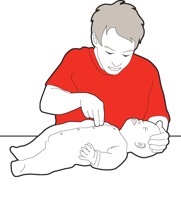 637x768 Heartsaver Pediatric Firstaid Cpr Aed Bellarina's Culinary Inc