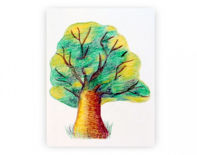635x500 How To Draw A Tree With Crayons Highlights, Shadows