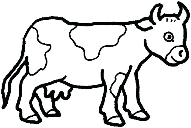 746x500 Easy Pictures To Draw Of Animals Adult Easy Drawings Of Animals