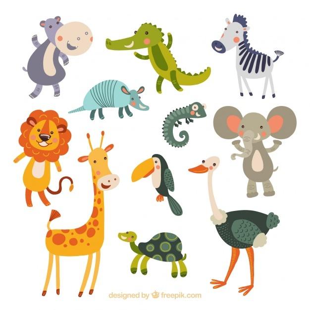 626x626 Animals Vectors, Free In Format