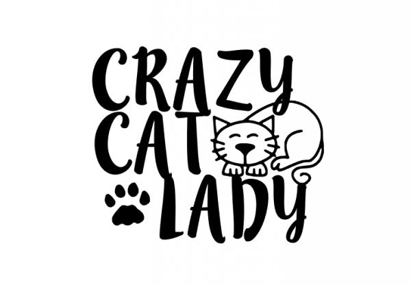 600x416 crazy cat lady car decal sticker car laptop window ipad sticker
