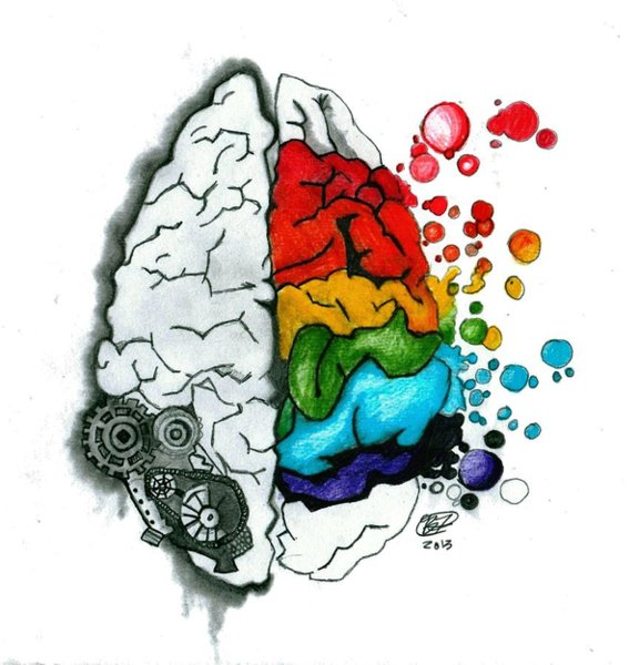 576x600 Creative Brain Drawing