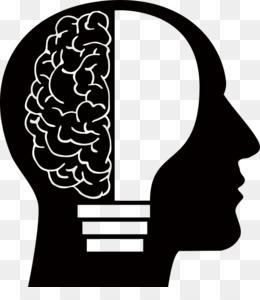 260x300 Creative Brain Png